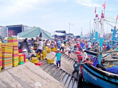 Sẽ xây dựng 14 cảng cá, khu neo đậu ở Trường Sa, Hoàng Sa