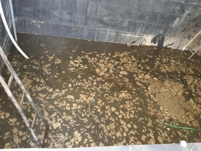 5 người tử nạn trong hầm nước mắm