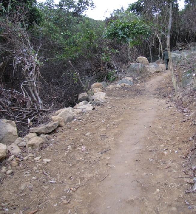 Ngang nhiên dựng lán trại, mở đường vào... phá rừng Sơn Trà
