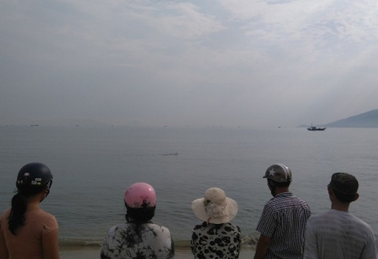 Đang giải cứu cá heo nặng gần 1 tạ bị thương dạt vào bờ biển