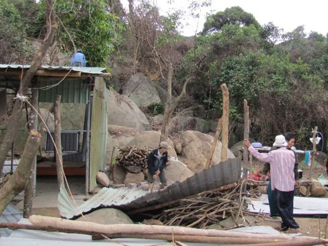 Khởi tố vụ án phá rừng tại Khu bảo tồn thiên nhiên Sơn Trà