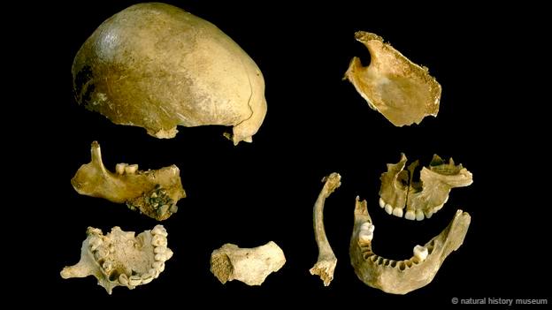 Bằng chứng tổ tiên con người từng ăn thịt lẫn nhau