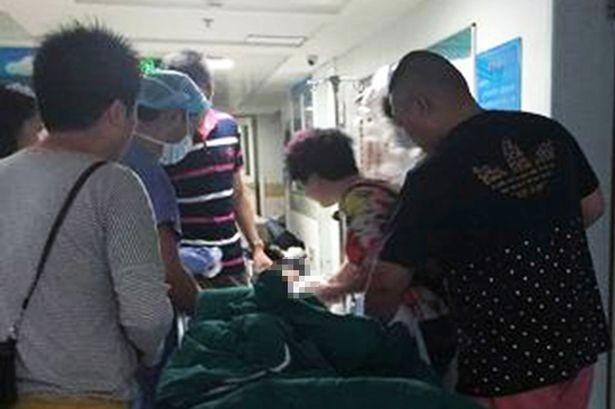 Nghịch chuồng hổ, bé hai tuổi bị cắn gần đứt lìa cánh tay