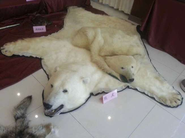 Bắc Kinh bắt nhóm buôn động vật hoang dã hàng triệu USD