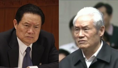 Vì sao tóc Chu Vĩnh Khang bạc trắng khi hầu tòa?