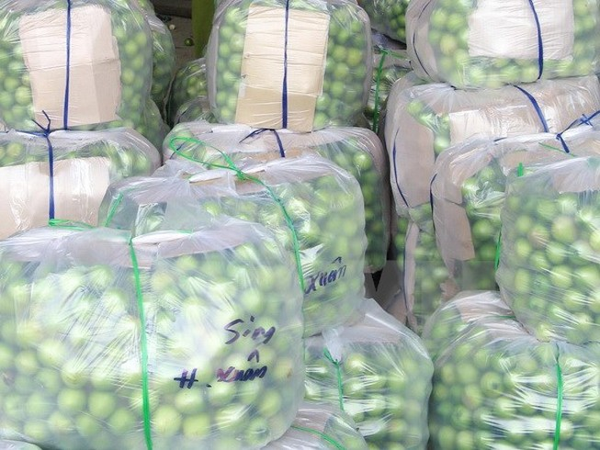 Thực hư chuyện 'táo Ninh Thuận giá chỉ 1.000 đồng/kg'