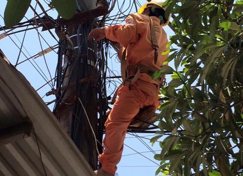 Phát quang lưới điện, một công nhân tử vong