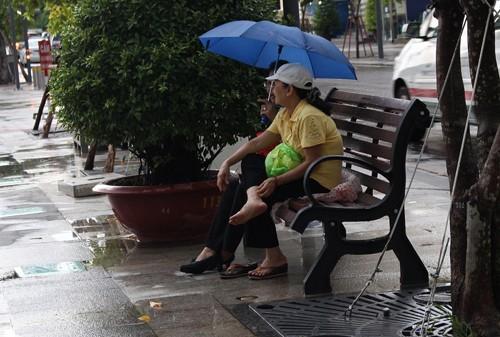 Lắp đặt băng ghế trên phố đi bộ Nguyễn Huệ