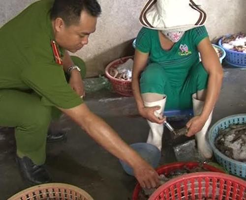 Đột kích bắt hai cơ sở bơm hóa chất vào tôm sú