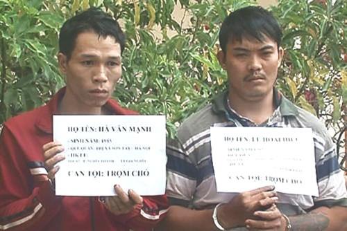 Cảnh sát 113 truy bắt 2 kẻ trộm chó