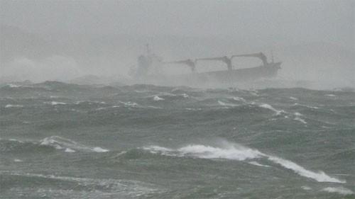 Bảy người trên tàu cá mất tích trên vùng biển Bình Thuận