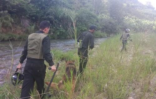 Cảnh sát đã bắt hai tên cướp taxi trốn vào rừng