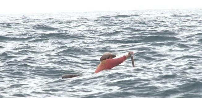 2 sinh viên mất tích trên biển Bình Định