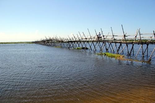Ba hộ dân làm cầu tre dài nhất Việt Nam
