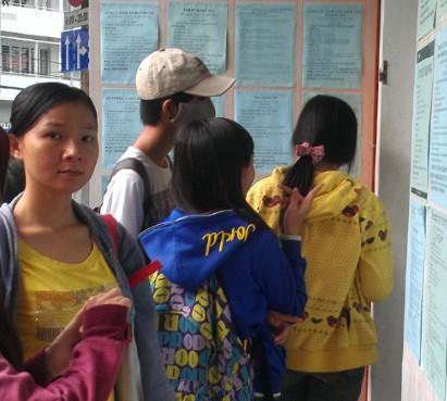 Gần 5.500 việc làm tết chờ sinh viên