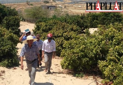 Nóng: Một người dân trình báo đã phát hiện 'kho báu núi Tàu'