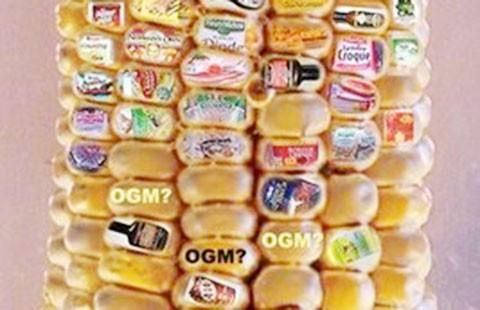 Bao giờ dán nhãn thực phẩm biến đổi gien?