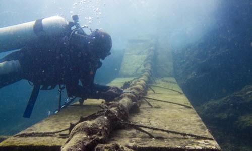 Đứt cáp quang và nỗi oan… cá mập