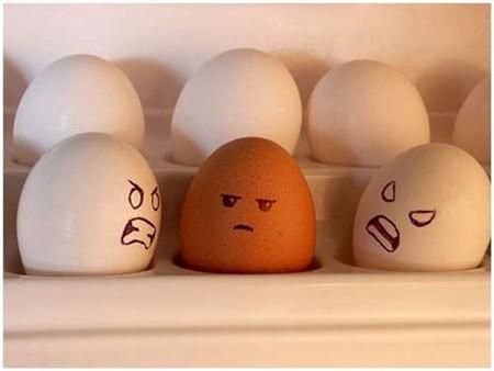 Câu chuyện chuyền… trứng