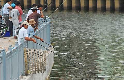 TP.HCM sẽ cấm câu cá trên kênh