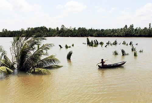 TP.HCM: 1.000 m2 đất bị nước cuốn, hàng chục người thoát chết