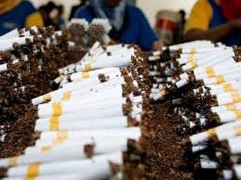 WHO khuyến khích tăng thuế thuốc lá