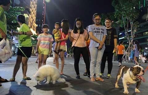 Không nên quy định riêng về trộm thú cưng