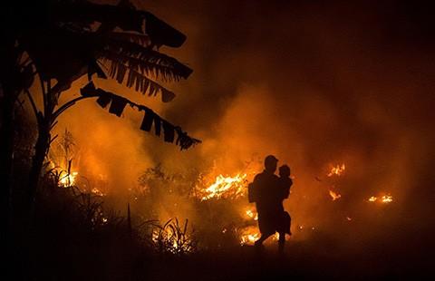Cháy rừng tại Indonesia: Đe dọa sức khỏe cả khu vực