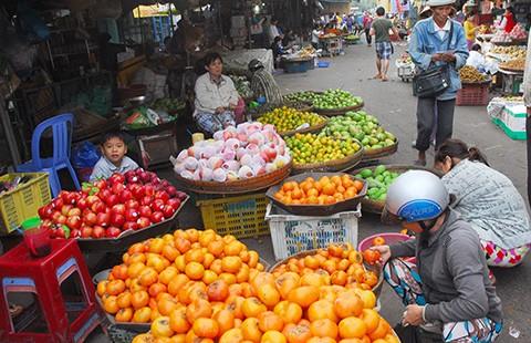 Hồng Trung Quốc 'giết' hồng Đà Lạt