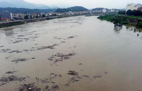 Lũ vì thủy điện Trung Quốc: Cần luật chơi mới!