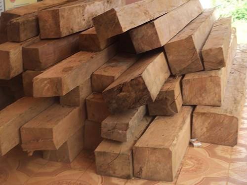 Bắt thêm một kiểm lâm nhận hối lộ, áp tải gỗ lậu
