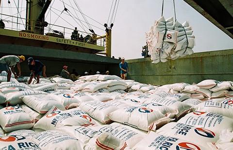 Gạo Việt 'mò mẫm' tìm lợi thế!