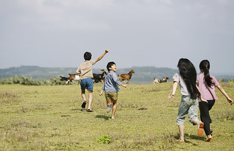Để phim ngoại ngẩn ngơ vì cảnh Việt