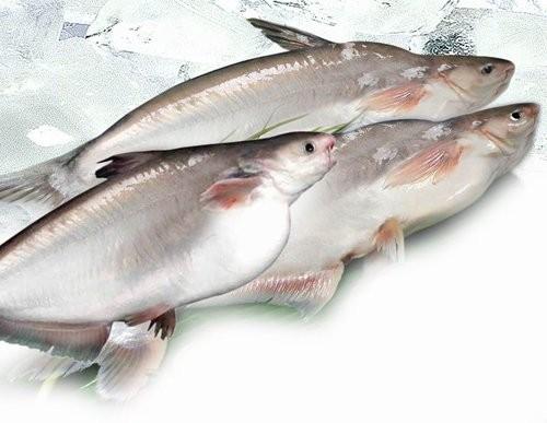 Sẽ làm việc với Bộ Nông nghiệp Hoa Kỳ về cá ba sa