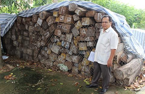 Vụ 'nhập lậu gỗ' đình đám: Bộ Công an đề nghị hải quan trả gỗ