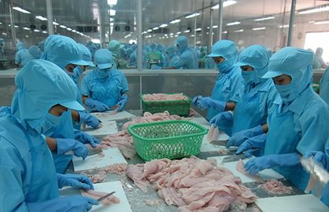 Nghị sĩ Mỹ lên tiếng, cá tra Việt có thoát 'nạn'?