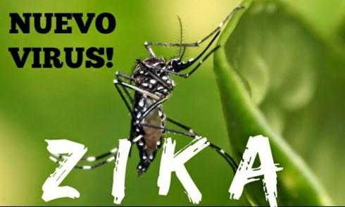 Nguy cơ virus Zika vào Việt Nam