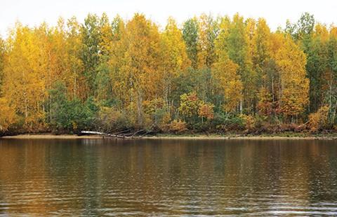 Mùa thu trên dòng Volga