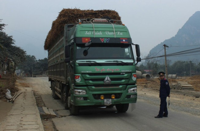 Tạm đình chỉ chánh thanh tra Sở GTVT tỉnh Thanh Hóa