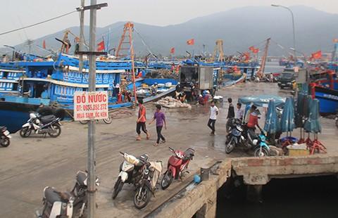 Trộm cắp, bảo kê ở cảng cá Đà Nẵng