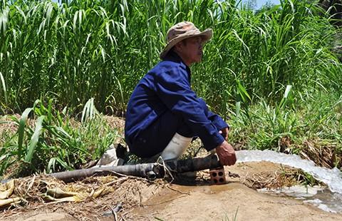 Nha Trang: Nhà máy nước bị đe dọa