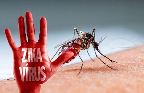 Cảnh báo đề phòng dịch Zika quay trở lại