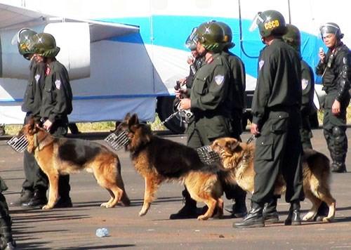 Hơn 100 cảnh sát vây ổ ma túy Bình Thuận