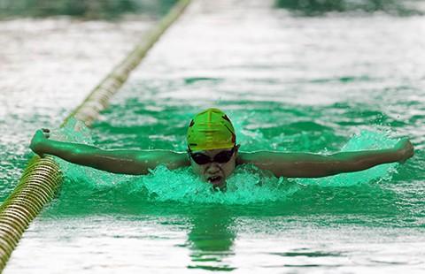 Giải bơi vô địch các nhóm tuổi 2016: Phương Trâm giành HCV thứ 19