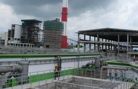 Thanh tra toàn diện nhà máy giấy tỉ đô có nguy cơ 'bức tử' sông Hậu