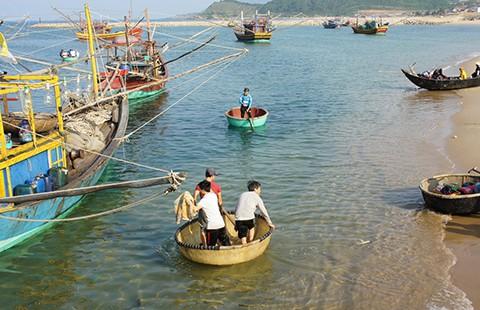 Vụ cá chết: Trình Chính phủ phương án hỗ trợ ngư dân
