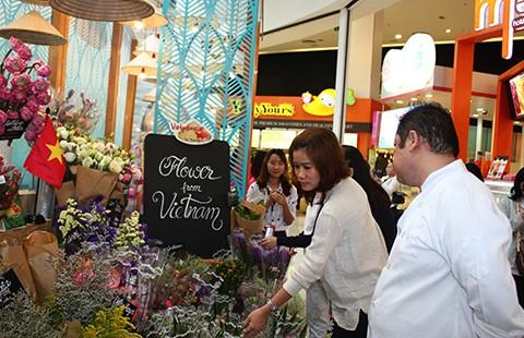 Đại gia Thái săn tìm thanh long, khoai lang, vú sữa...Việt