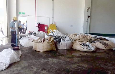 Giám đốc công ty môi trường đem chất thải của Formosa về... bón cây