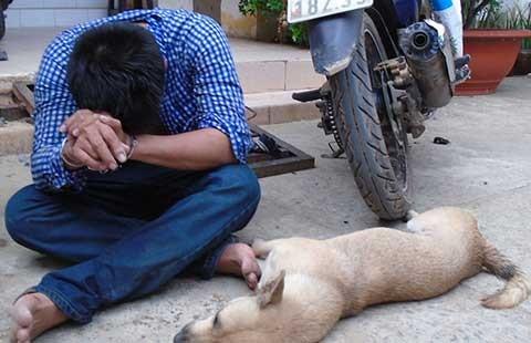 Đánh đập người trộm chó: Do mất niềm tin?