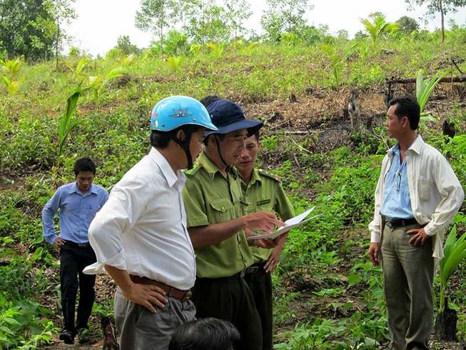 Tranh cãi về vụ hủy hoại rừng ở Phú Quốc